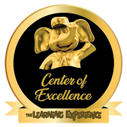 Center of Excellence Award  - 2016-2015