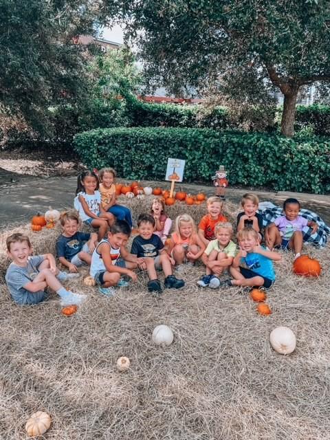 Annual Pumpkin Patch Fun