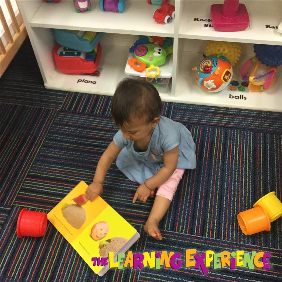 Best Preschool in Hamilton